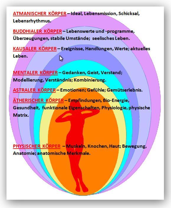 Berühmt Sichtbarer Körper Anatomie Und Physiologie Bewertung Fotos ...